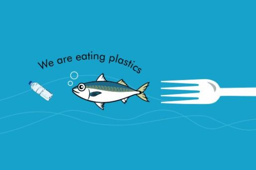 We are eating plastics